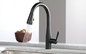 Delta Faucet's Essa kitchen faucet design in the black matte finish