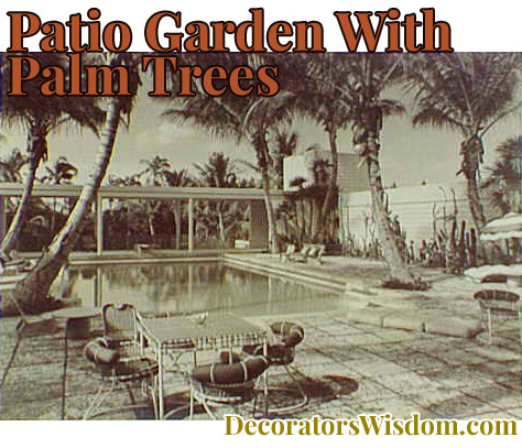 Patio Garden With Palm Trees
