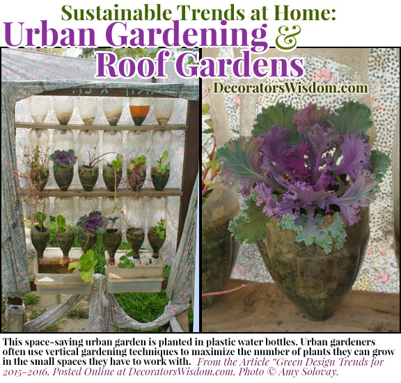 Sustainable Trends at Home: Urban Gardening, Roof Gardens and Window Gardens Are All Hot Trends for 2017
